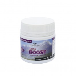 HealthWise® LactoBOOST 120 caps