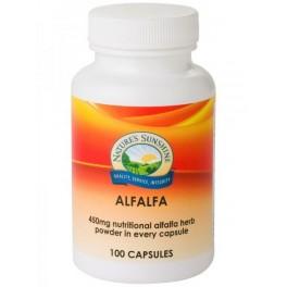 Alfalfa (Medicago sativa) 450mg